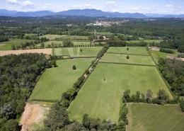 Oltre 100 ettari di paddocks