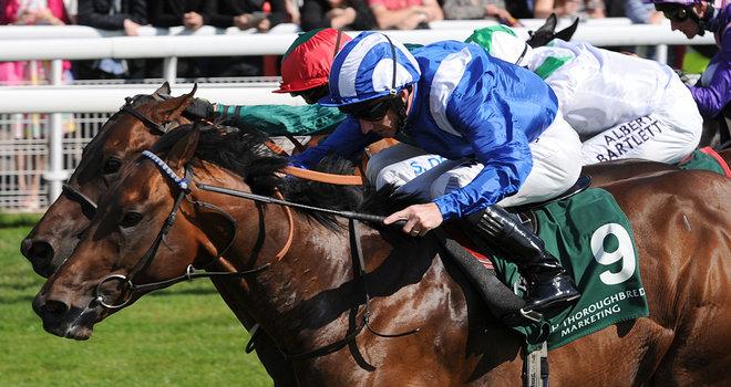 Muhaarar, Gimcrack Stakes Gr.2